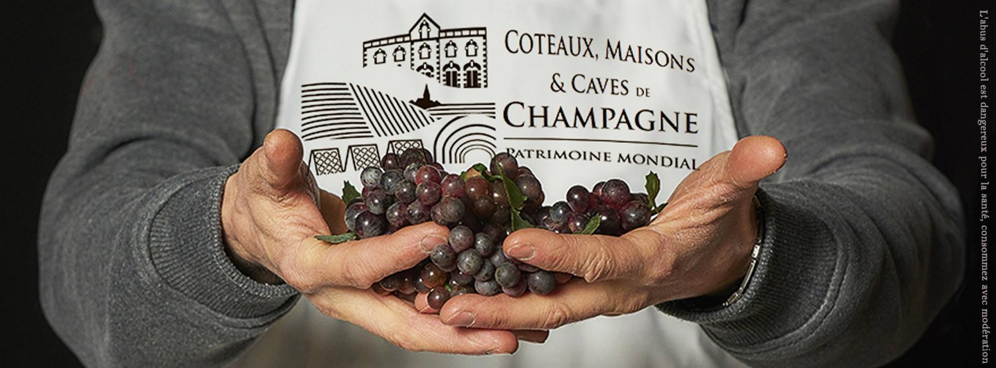 Champagne Météyer